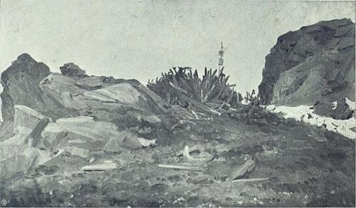 А. А. Борисов. Груда самоедских идолов в нескольких саженях от главной святыни на острове Вайгач